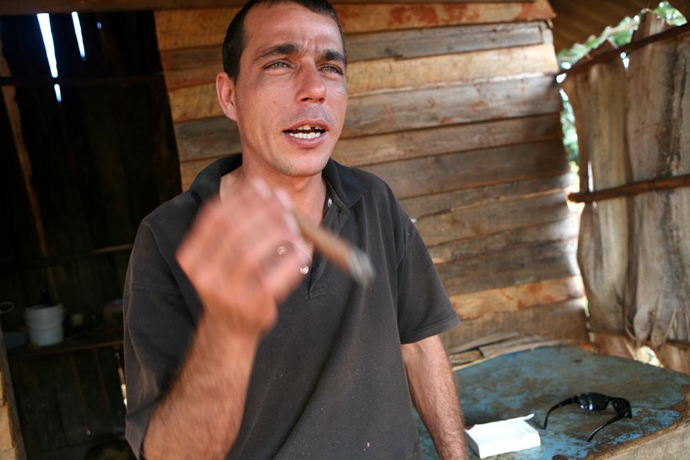 cuba tobacco 56 small