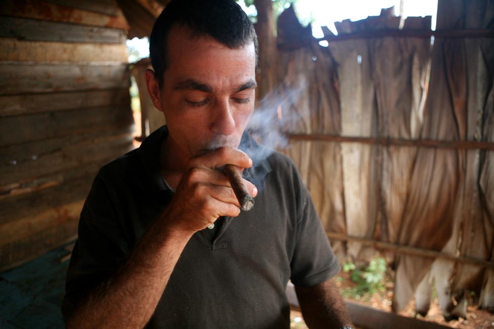 cuba tobacco 57 small